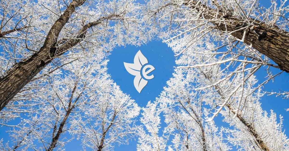 Aumentiamo le nostre difese immunitarie d'inverno